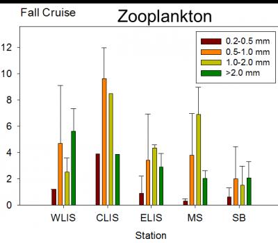 LIS plankton